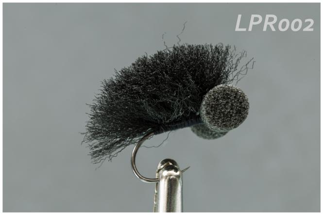lpr002
