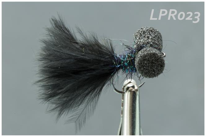 lpr023